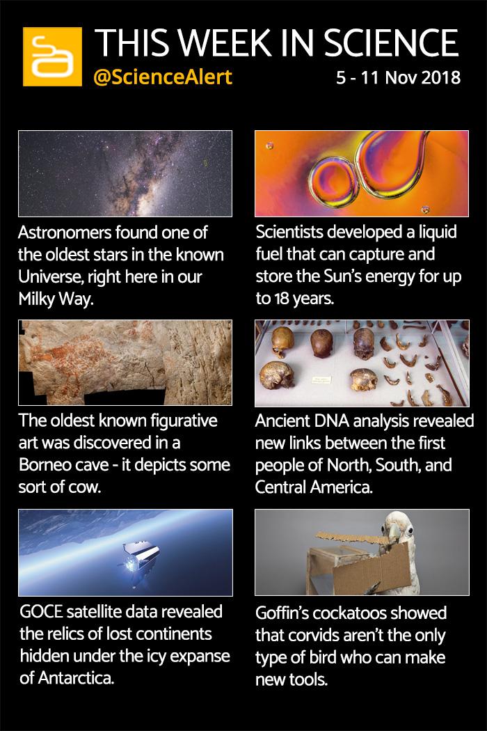 science week important sciencealert infographic november