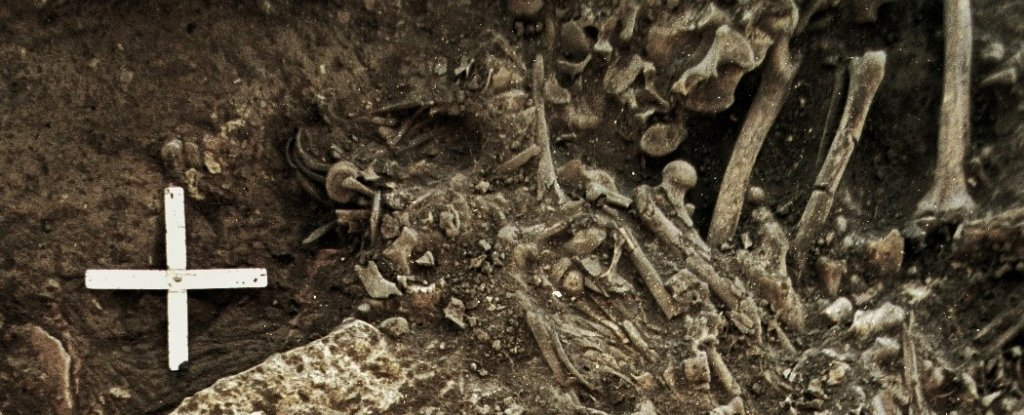 Scientists Just Found The Oldest Evidence of Plague, in The Bones of a Neolithic Woman