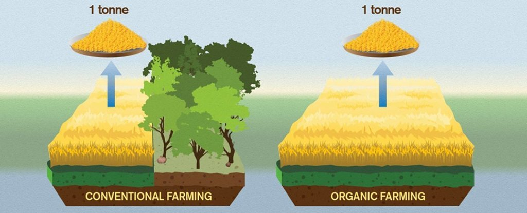 New Paper Shows How Much Worse Organic Farming Can Be For The Climate