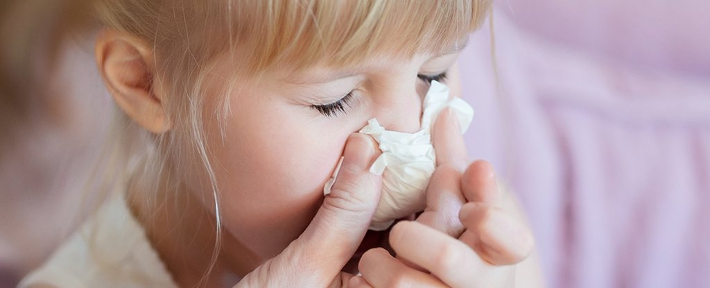 Exciting Study Shows Some Immune Cells Can Fight Every Known Flu Virus