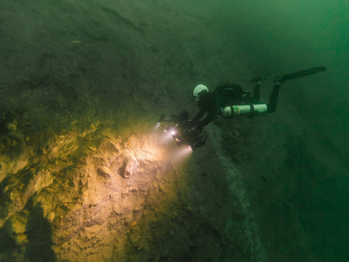 Diver Marty O'Farrell films fossils embedded in the sinkhole wall. (Tony Rath/Valley of Peace Archaeology)