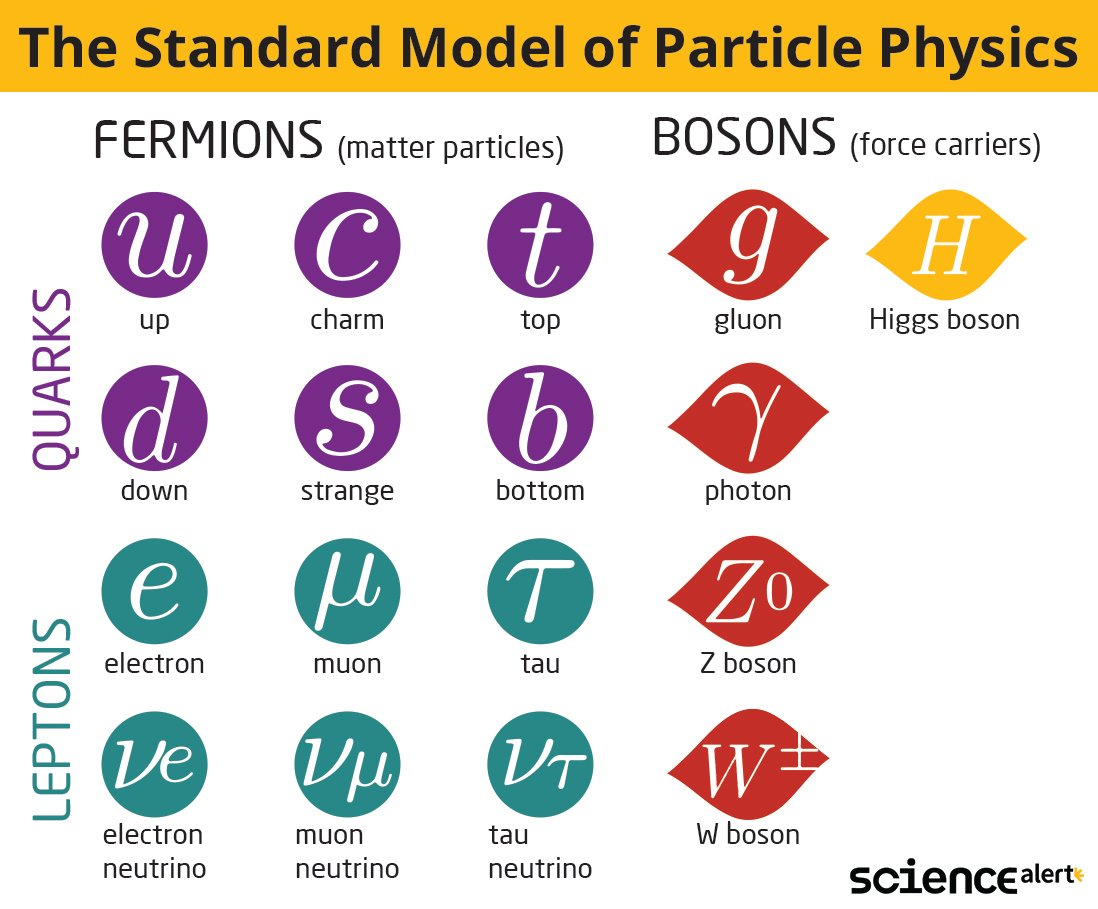 chart of fermions and bosons