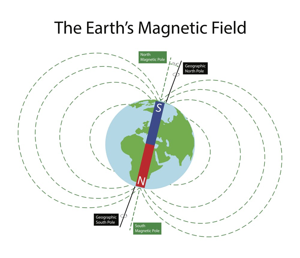 Life on Earth is exposed to the planet's ever-present geomagnetic field. (Nasky/Shutterstock)