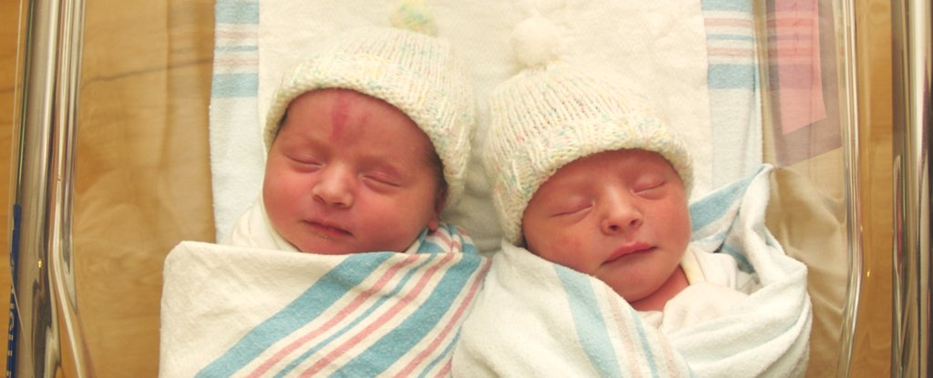 Sharing The Womb With a Twin Brother Seems to Have a Huge Detrimental Effect on Girls
