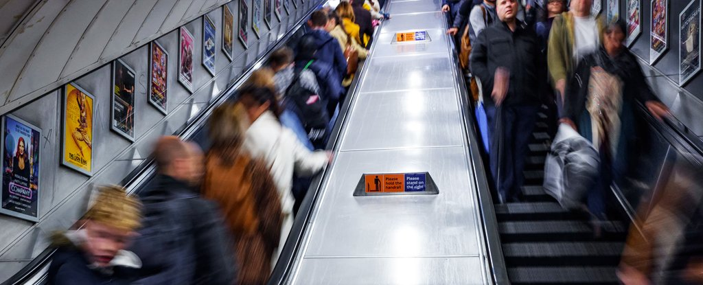 Is It More Efficient to Stand or Walk on an Escalator? This Scientist Has The Answer