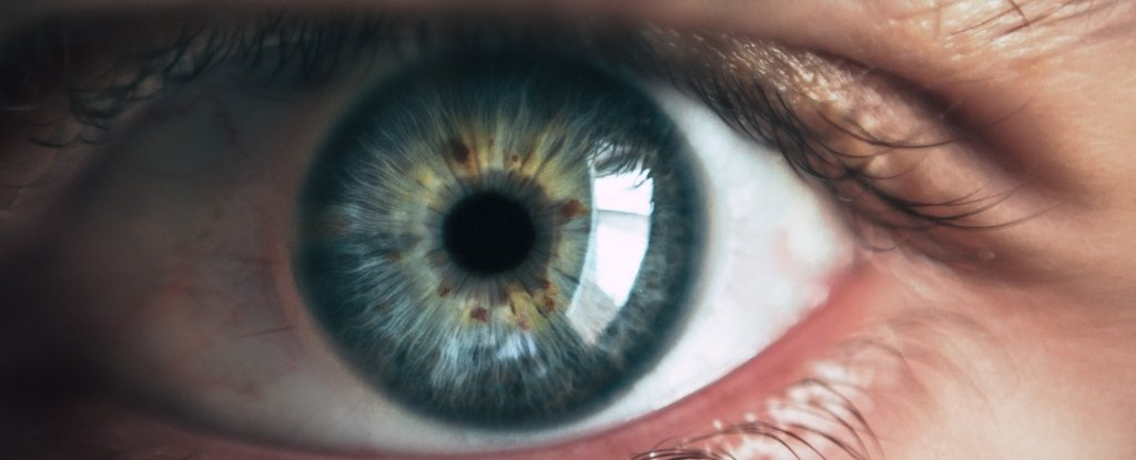A Brutal Startup Is Forcing You to Watch Ads Using Eye-Tracking Technology