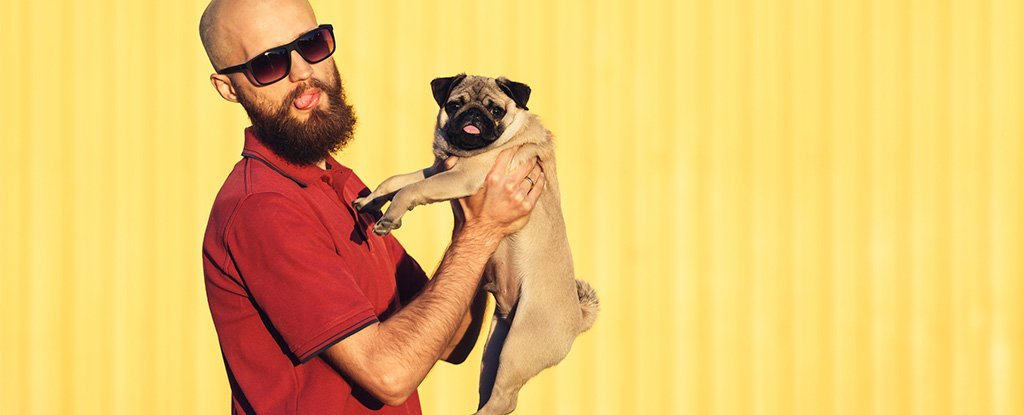 Here's What That Study Comparing Beard And Dog Microbes Was Actually About