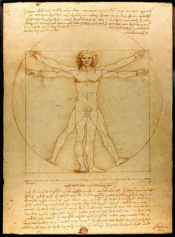 Leonardo da Vinci's Vitruvian Man. (Luc Viatour / https://Lucnix.be)