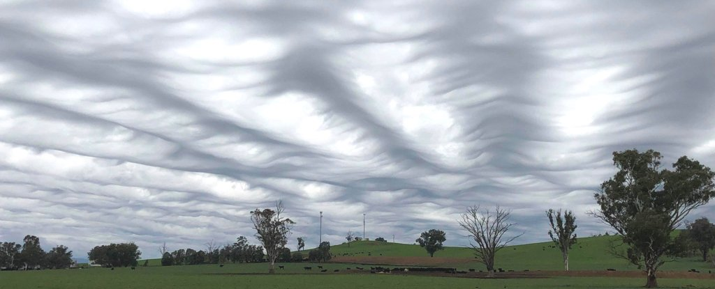 This Stunning Wave-Like Cloud Formation Wasn't Classified Until 2017