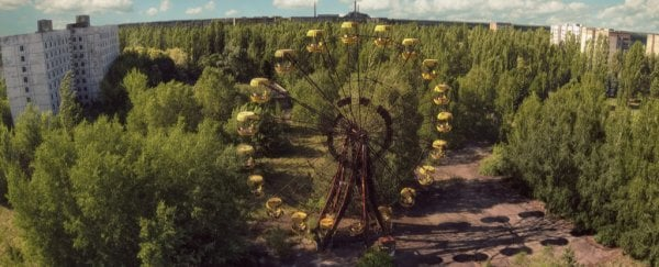 Chernobyl Has Been Reclaimed by Plants  Why Don't They Die
