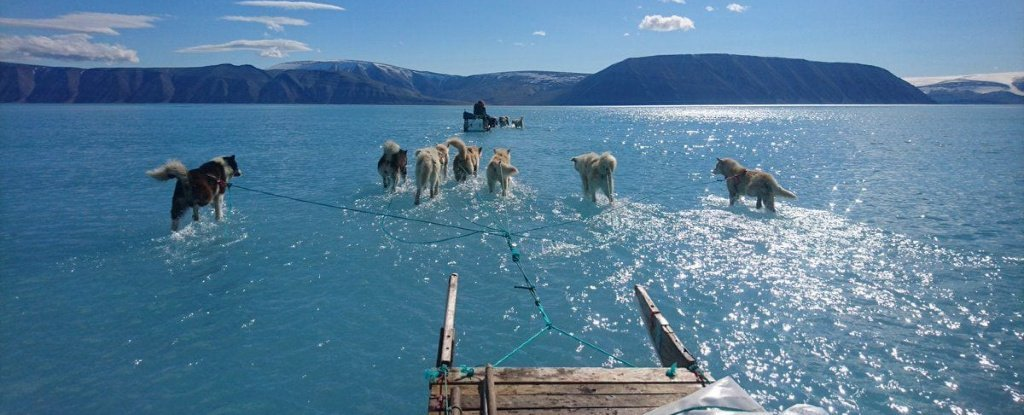Greenland Was 40 Degrees Hotter Than Normal This Week, And Things Are Getting Intense