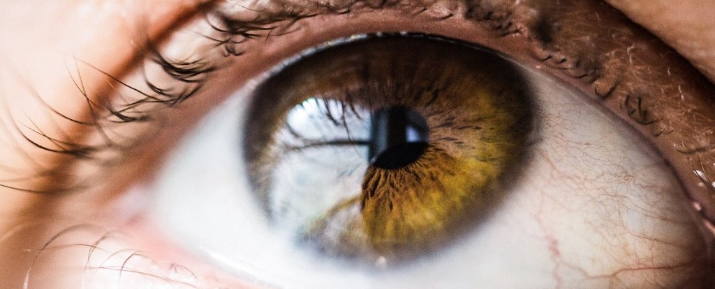 There's Bacteria Living on Your Eyeball, And It Could Be More Important Than We Think