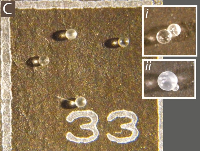 more microtektites