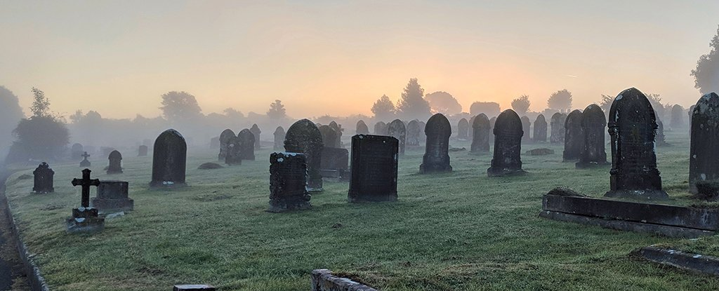 Experts Are Proposing a New, Slightly Creepy Way of Burying Our Dead