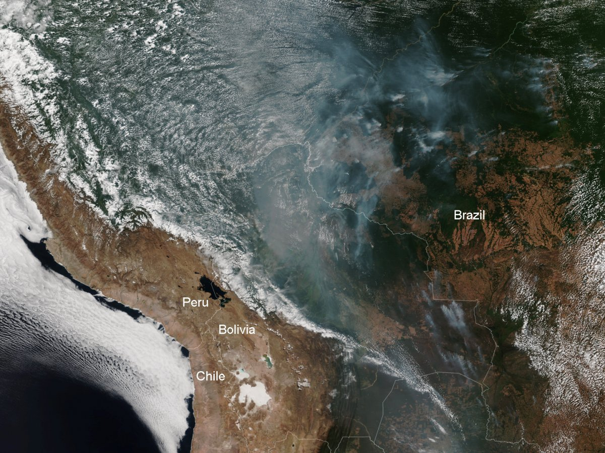 Satellite image of the burning rainforest on August 12. (NOAA)