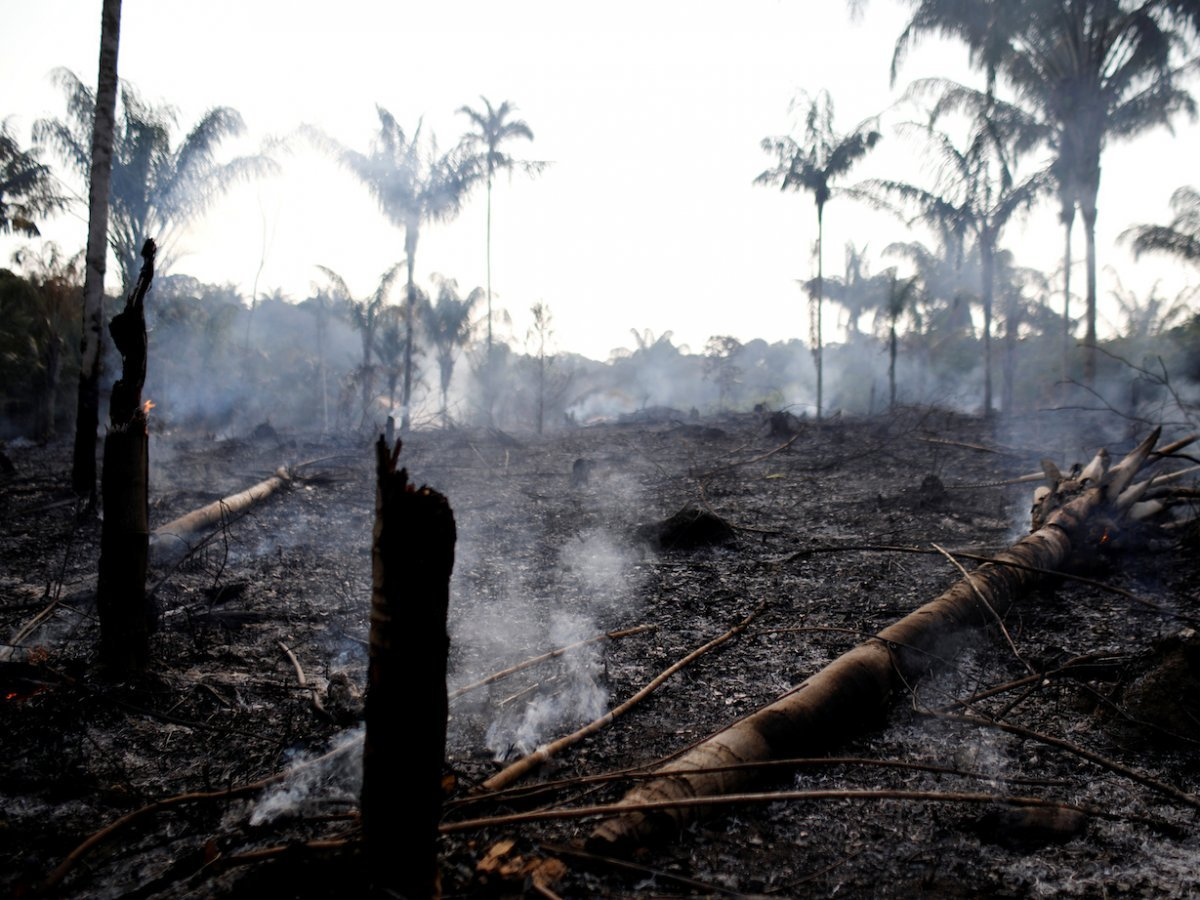 Part of the rainforest burned by loggers and farmers on August 20. (REUTERS/Bruno Kelly)