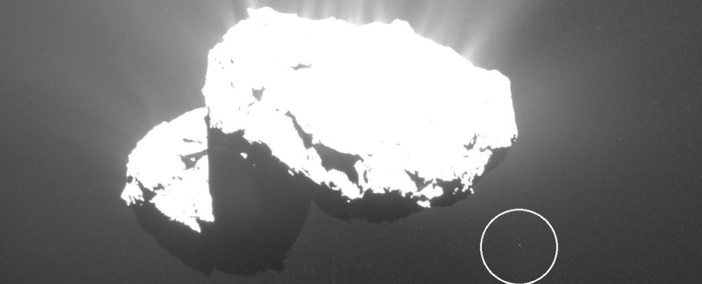 We've just discovered comet 67P has its own little 'Churymoon', and it's so cute
