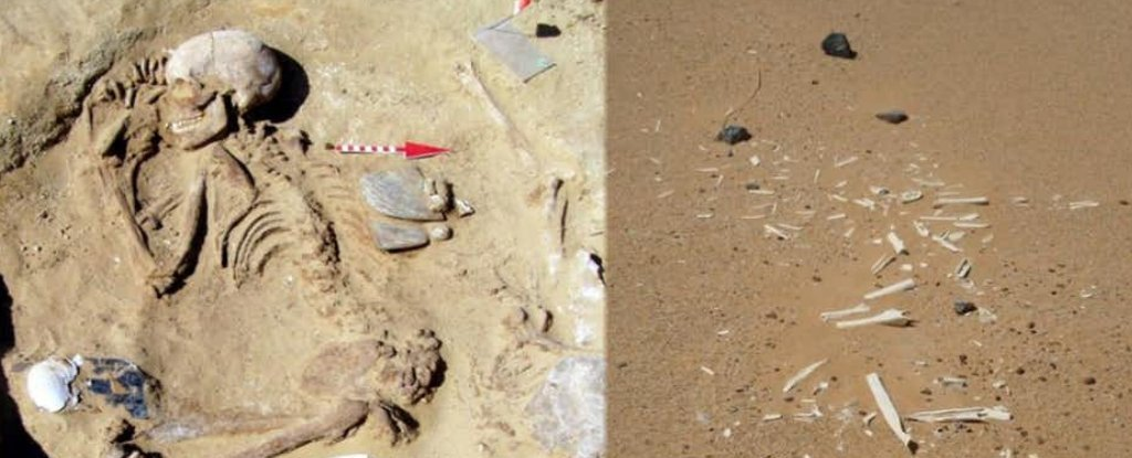 Archaeologists Shed Light on Mysterious Neolithic Society Behind Rise of Ancient Egypt