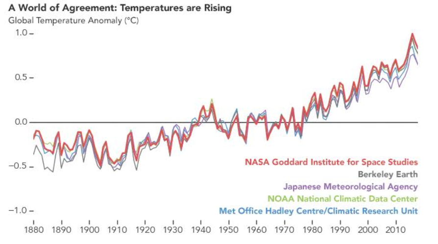 Reconstruction of global temperatures from 1880 to 2018 by five independent international groups of scientists. (NASA)