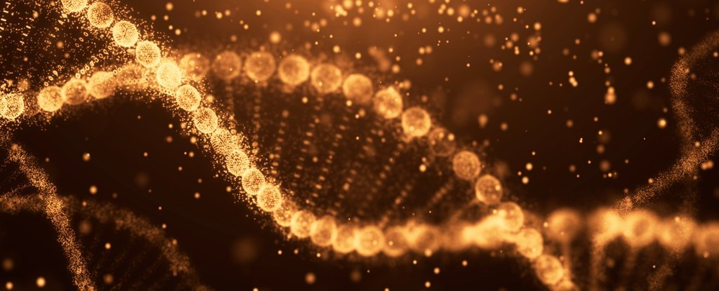 Radical New Method Can Directly Edit Human Cells to Get Rid of Genetic Disease