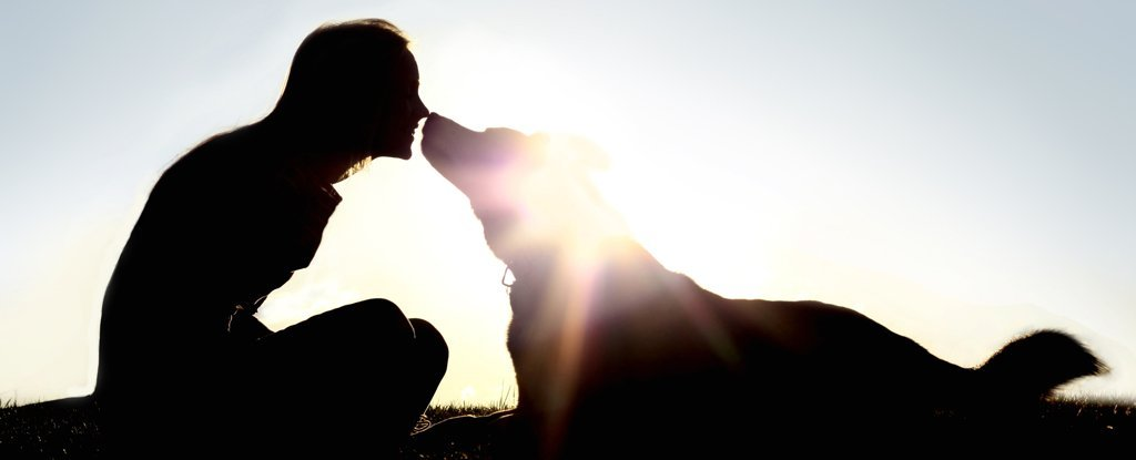 Owning a Dog Lowers Your Risk of Death if You've Had Heart Problems, Study Shows