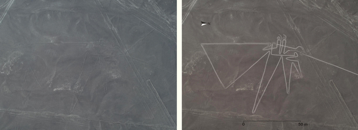 010-nazca-geoglyphs-1.jpg