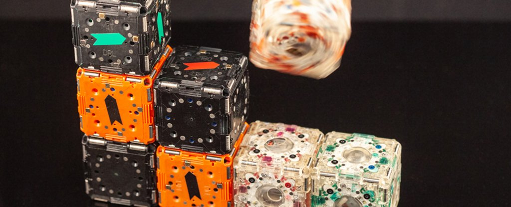 MIT Researchers Have Created Tiny Cube Robots That Swarm Together With a Hive Mind