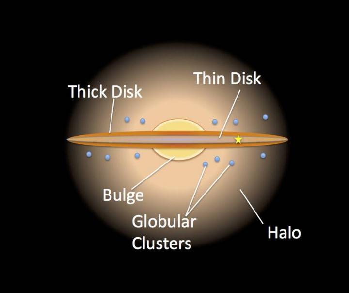 Anatomy of the Milky Way. (NASA/JPL Caltech/R.Hurt/SSC)