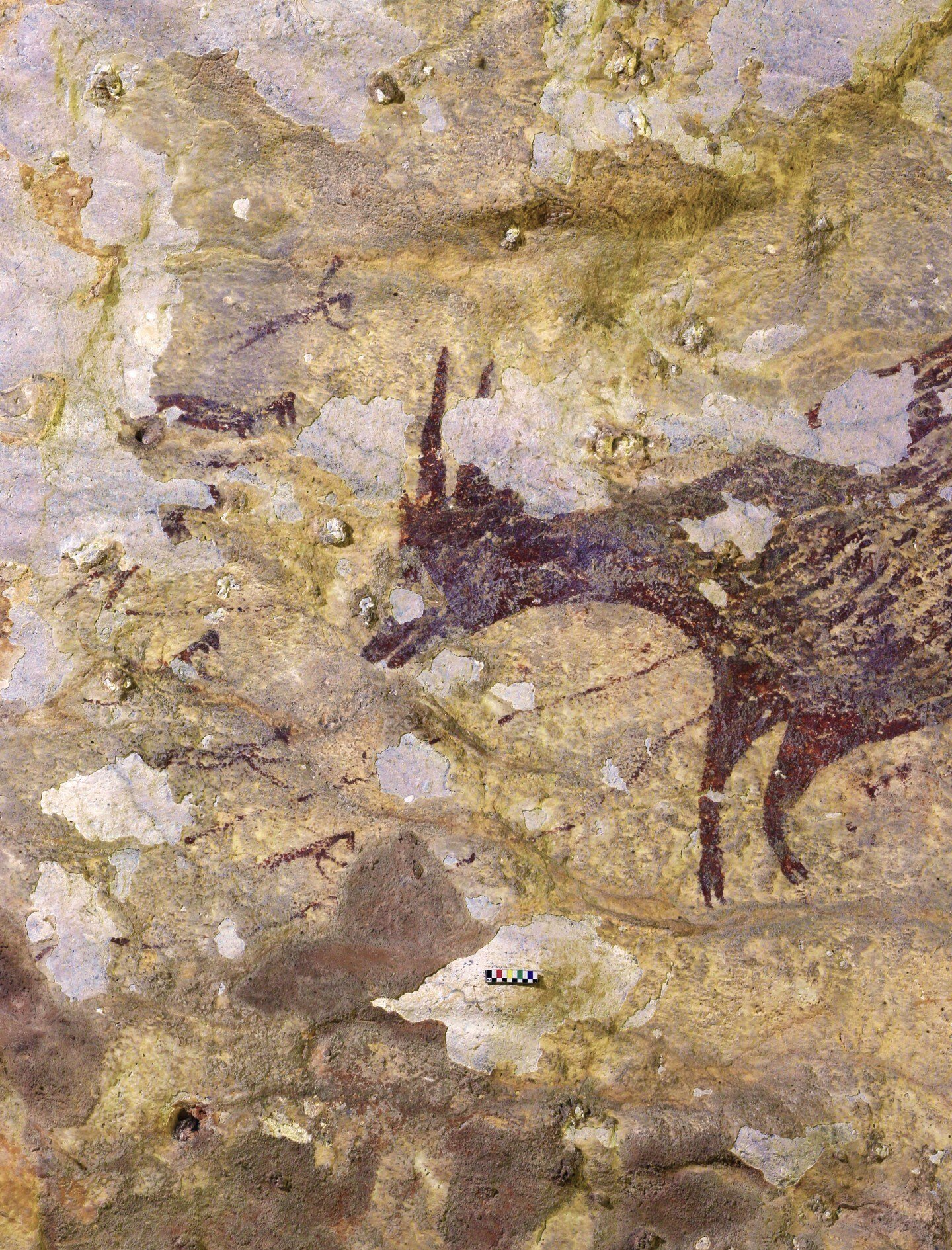 cow oldest story cave painting