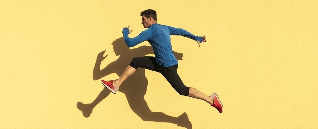 Scientists Identify Natural Protein That Mimics The Effects of Exercise in Animals
