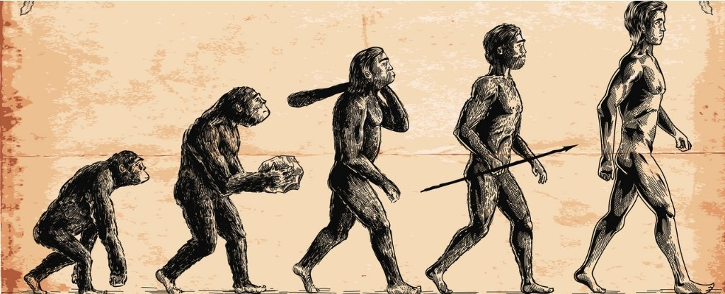 That Classic Image Everyone Uses to Illustrate Evolution Is ...