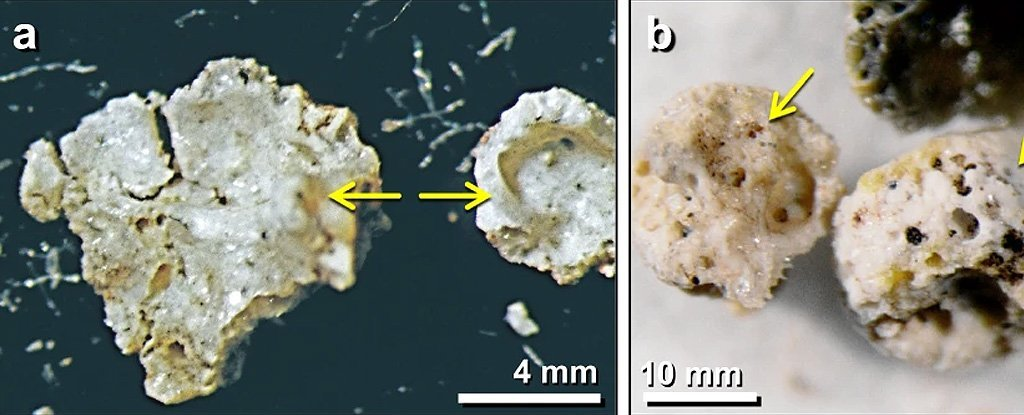 Glass in The Soil of a 13,000-Year-Old Settlement in Syria Points to Comet Impact
