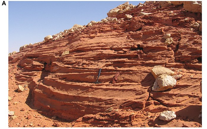 Tabular cross-bedding in the Gara Sbaa Formation