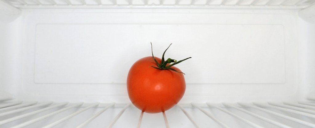 A New Study May Have Just Changed The Advice on Storing Tomatoes in The Fridge