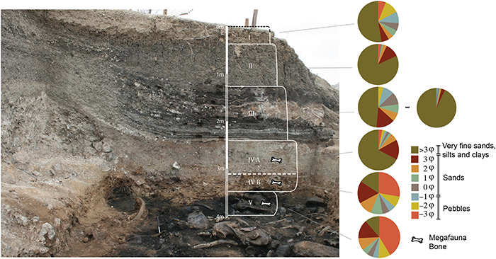 sediment layers with bones sloth tar pit