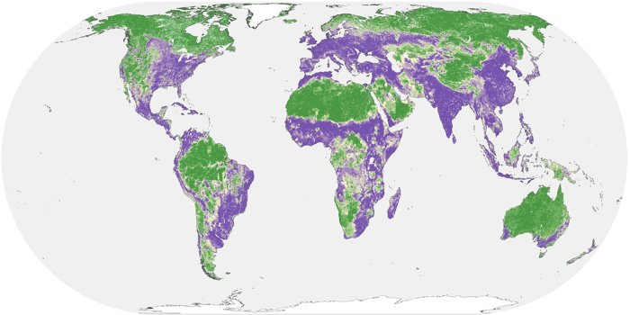 Half of Earth's Land Can Still Be Saved From Human Damage, Study Reveals