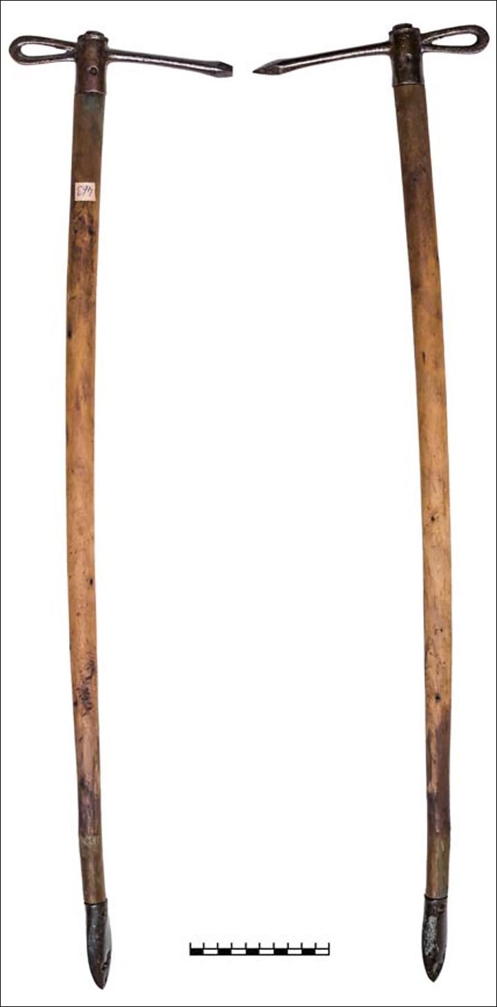 The Scythian girl's battle axes. (Makeeva et al, Stratum Plus, 2020)