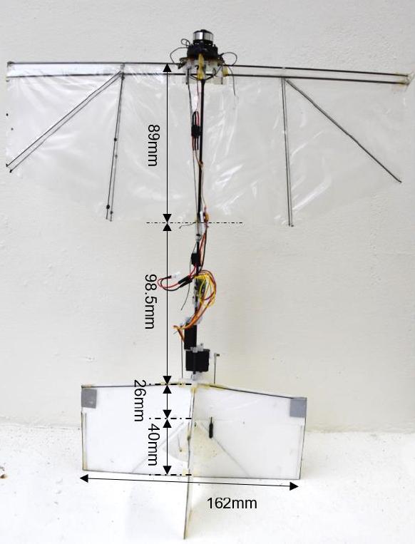 The design of the ornithopter. (Chin et al, Science Robotics)