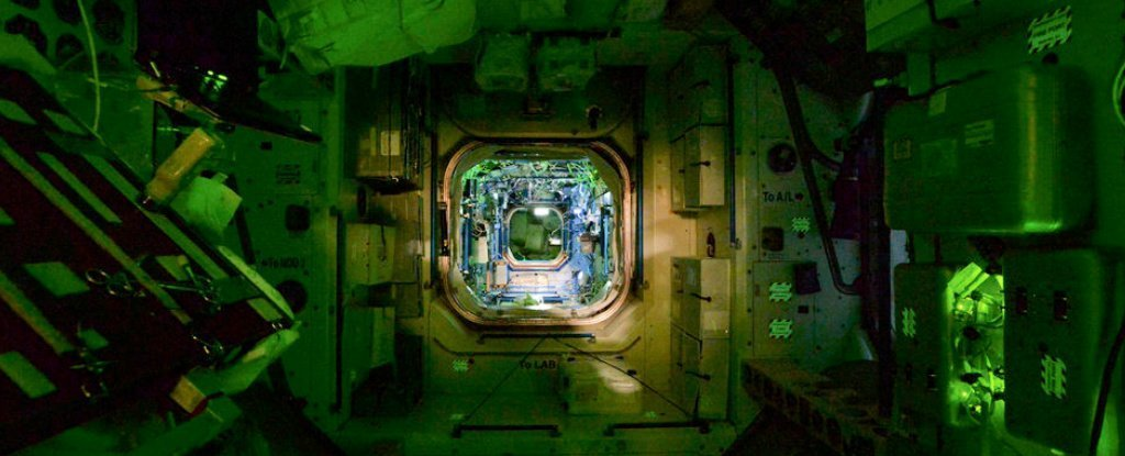 Experiments Show Bacteria Grow More Lethal And Antibiotic-Resistant in Space