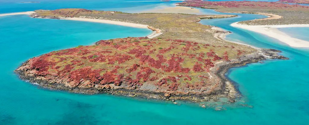 Landmark Discovery as Ancient Aboriginal Sites Found Underwater For First Time