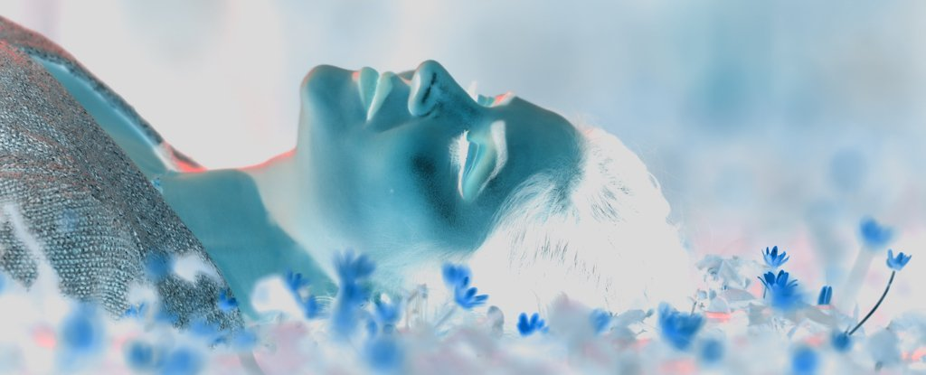 Massive Study of 24,000 Dreams Suggests They Really Are Continuations of Reality