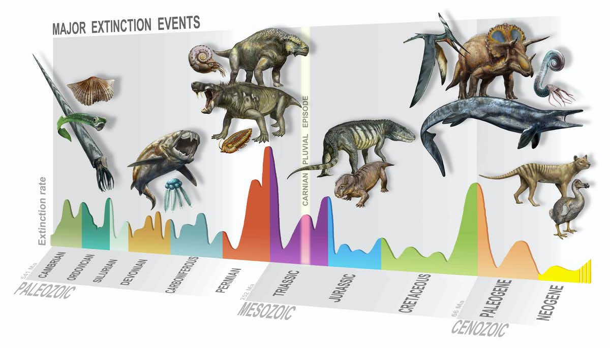 A timeline of mass extinction events. (D. Bonadonna/MUSE, Trento/Author provided)