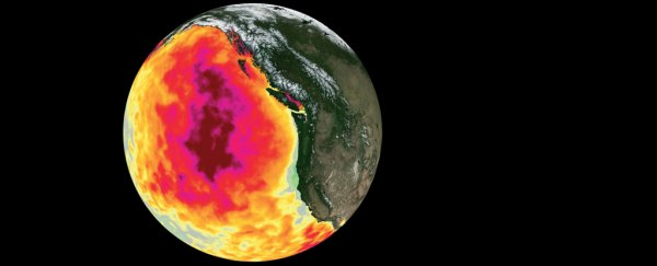 The Massive 'Blob' Anomaly Has Our Fingerprints All Over It, Study Finds
