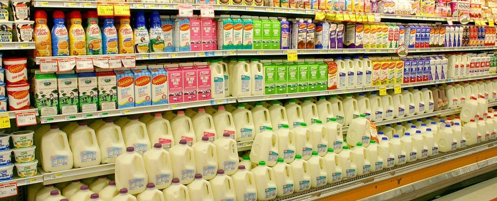 Oat Milk, Almond, Dairy or Soy? A Dietitian Breaks Down Your 'Milk' Options