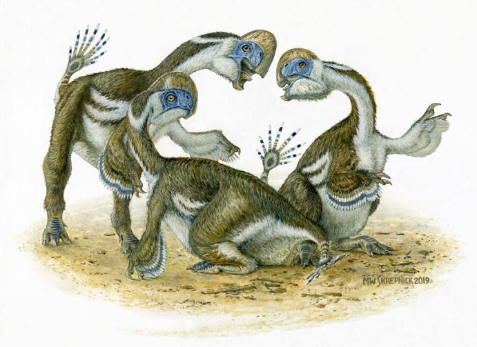 This Newly Discovered Parrot-Like Dinosaur Lost a Finger to Evolution