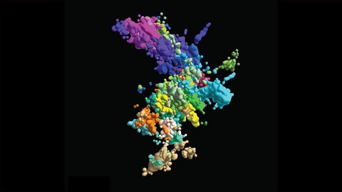Chromosomes Don't Look The Way You Think. We Now Have a 3D Image of The Real Thing