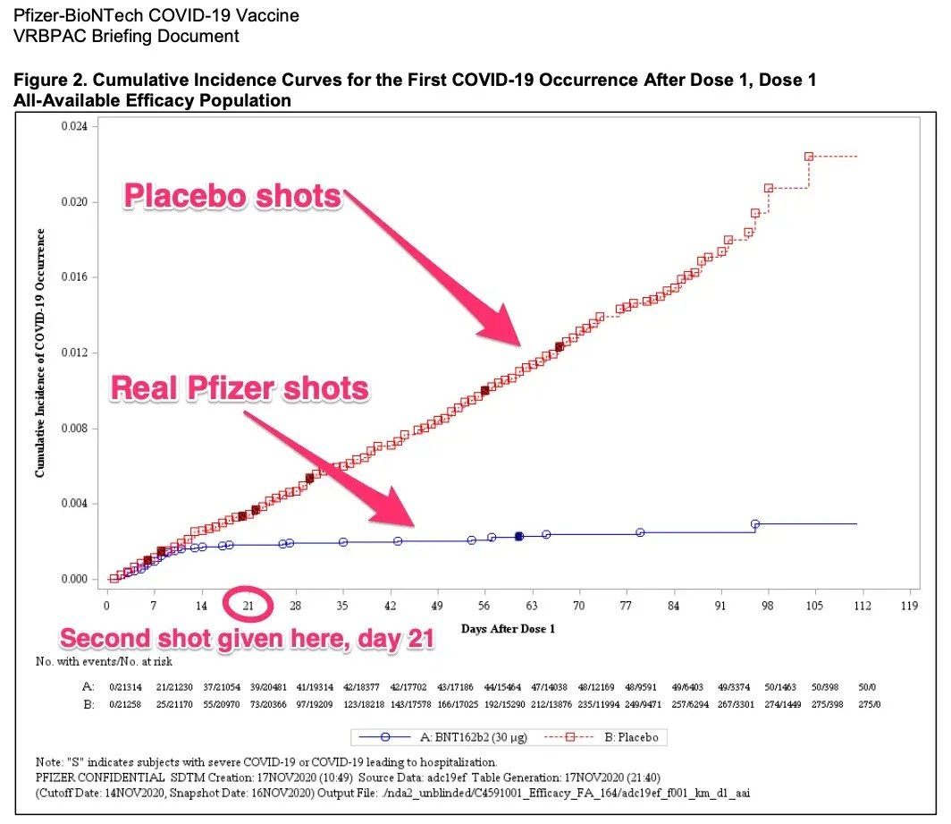 graph of pfizer versus placebo shot
