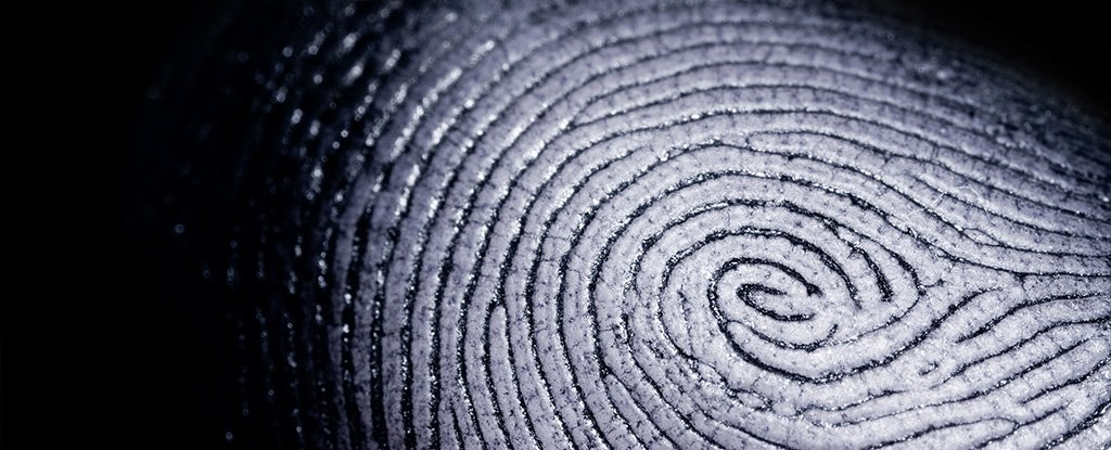 We May Finally Understand The Point of Having Moist Textured Fingertips – ScienceAlert