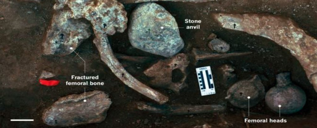 New Evidence Supports Controversial Claim of Humans in The Americas 130,000 Years Ago