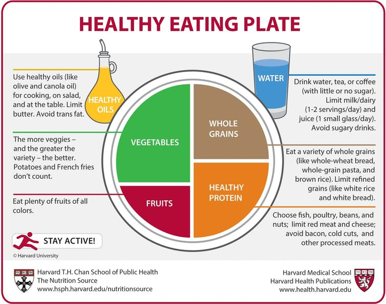 graphic of plate divided into portions of healthy food portions